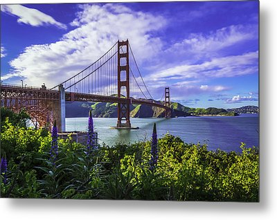 Golden Gate Of Spring Metal Print by Phil Fitzgerald