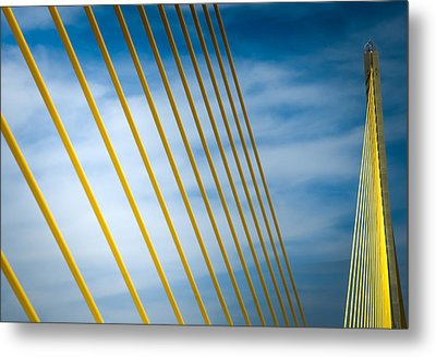 Golden Glow Of Tampa Metal Print by Karen Wiles