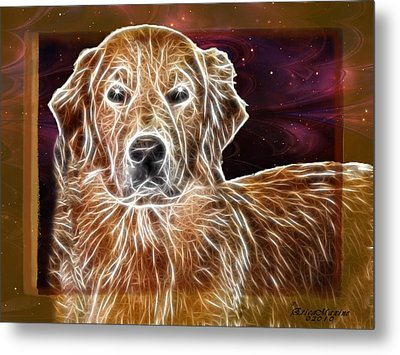 Metal Print featuring the photograph Golden Glowing Retriever by EricaMaxine  Price