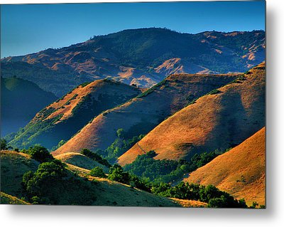 Golden Hills Metal Print by Steven Ainsworth