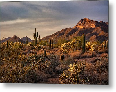Metal Print featuring the photograph Golden Hour On The Usery  by Saija Lehtonen