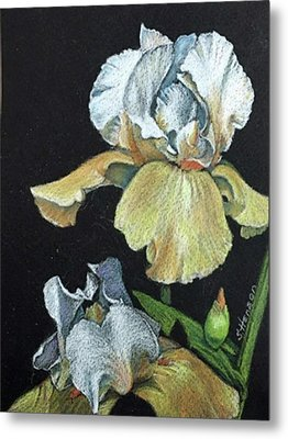 Golden Iris Metal Print