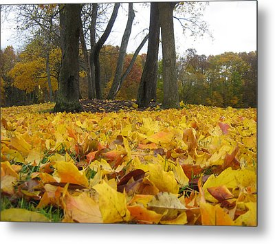 Golden Leaves Metal Print