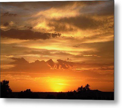 Golden Light Metal Print by Stephanie Moore