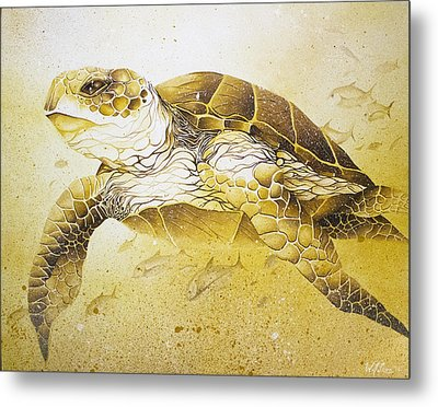 Golden Loggerhead Metal Print