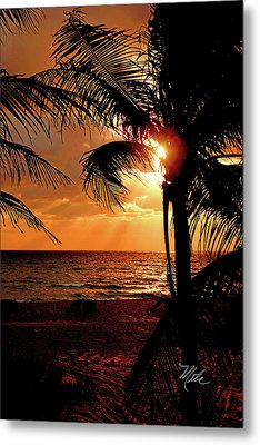 Golden Palm Sunrise Metal Print by Meta Gatschenberger