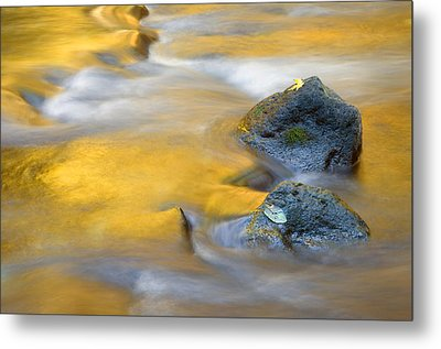 Golden Refuge Metal Print by Mike  Dawson