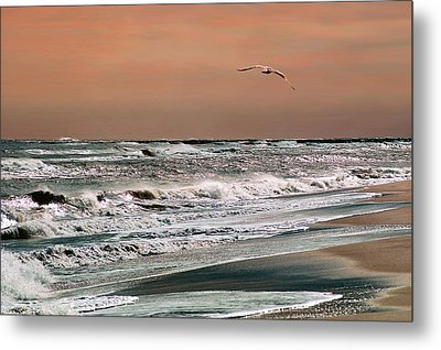 Metal Print featuring the photograph Golden Shore by Steve Karol