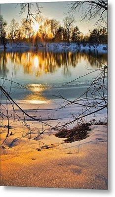 Golden Snow Metal Print by Robert Pearson