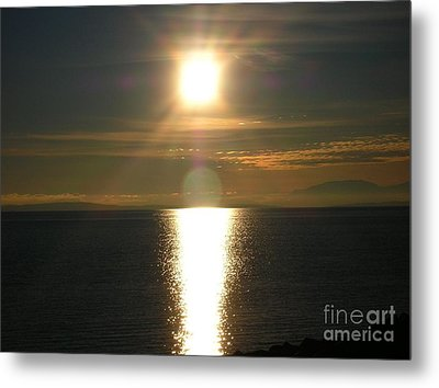 Metal Print featuring the photograph Golden Sunset by Kim Prowse