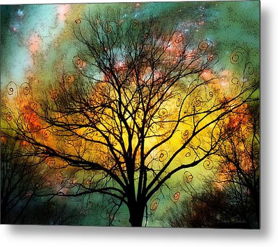 Golden Sunset Treescape Metal Print by Barbara Chichester