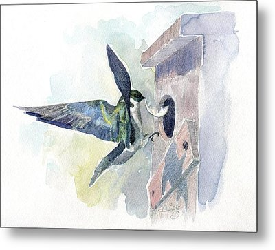 Golden Swallow Metal Print