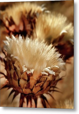 Metal Print featuring the digital art Golden Thistle II by Bill Gallagher