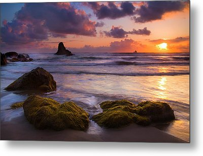 Golden Tides Metal Print by Mike  Dawson