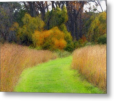 Golden Trail Metal Print