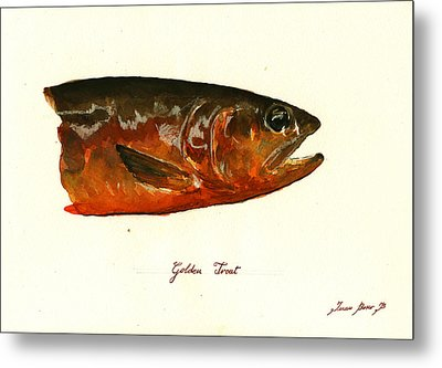 Golden Trout  Metal Print by Juan  Bosco