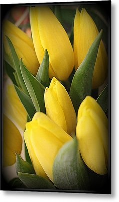 Golden Tulips Metal Print by Dora Sofia Caputo Photographic Art and Design