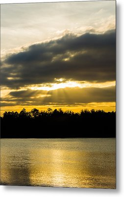Golden Warmth At Sunset Metal Print by Parker Cunningham