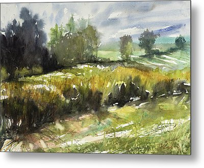 Goldenrod On The Lane Metal Print by Judith Levins