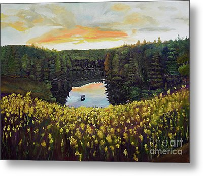 Goldenrods On Davenport Lake-ellijay, Ga  Metal Print
