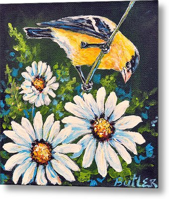 Goldfinch And Daisy Metal Print by Gail Butler