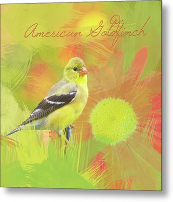 Metal Print featuring the photograph Goldfinch Watercolor Photo by Heidi Hermes