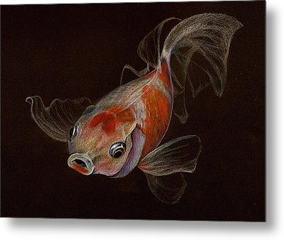 Metal Print featuring the drawing Goldfish by Heidi Kriel