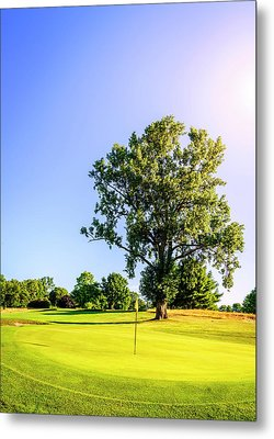 Metal Print featuring the photograph Golf Course by Alexey Stiop