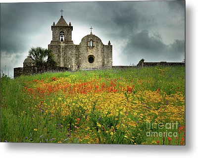 Goliad In Spring Metal Print by Jon Holiday