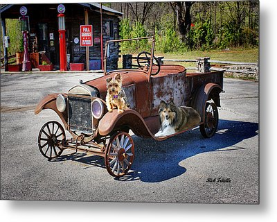 Gone To The Dogs Metal Print by Rick Friedle