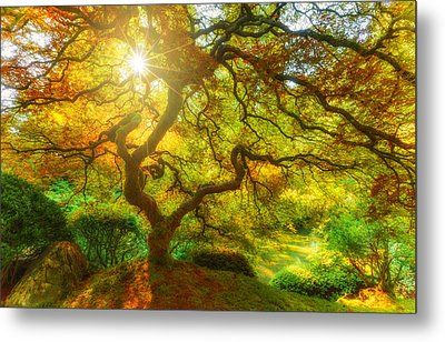 Good Morning Sunshine Metal Print by Darren  White