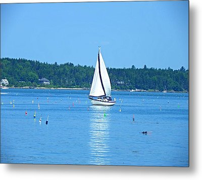 Good Sailing Metal Print