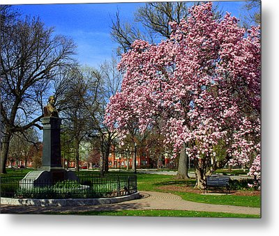 Goodale Park In The Spring Metal Print
