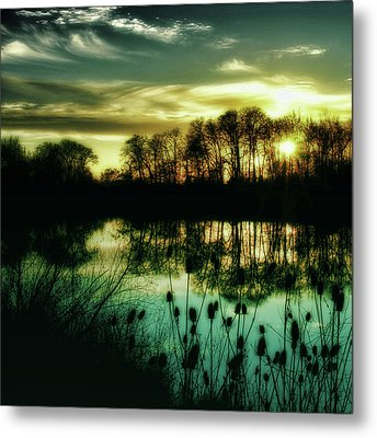 Goodbye To Today Metal Print by Bonnie Bruno