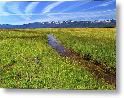 Metal Print featuring the photograph Goodrich Creek by James Eddy