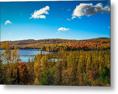 Goose Lake Metal Print