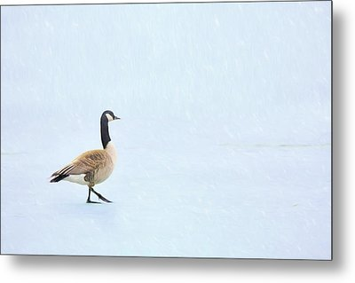 Metal Print featuring the photograph Goose Step by Nikolyn McDonald