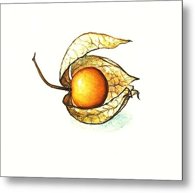 Metal Print featuring the painting Gooseberry by Heidi Kriel