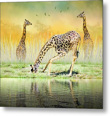 Metal Print featuring the photograph Gopher I Know I Saw A Gorpher by Diane Schuster