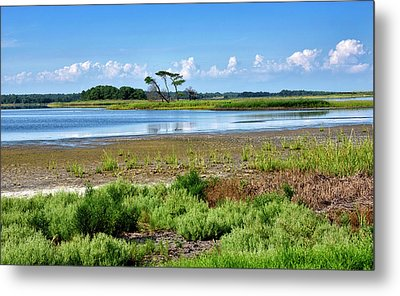 Metal Print featuring the photograph Gordons Pond At Cape Henlopen State Park - Delaware by Brendan Reals