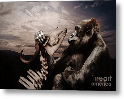 Metal Print featuring the photograph Gorilla And Bones by Christine Sponchia