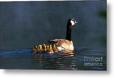 Gosling On Parade Metal Print