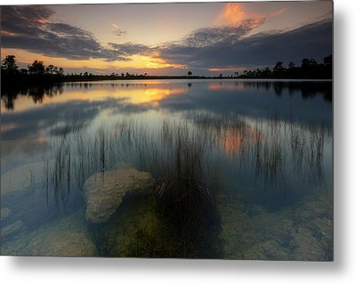 Metal Print featuring the photograph Gossamer Glades by Mike Lang