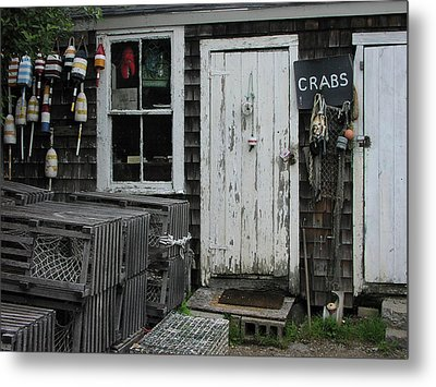 Metal Print featuring the photograph Got Crabs by Mike Martin