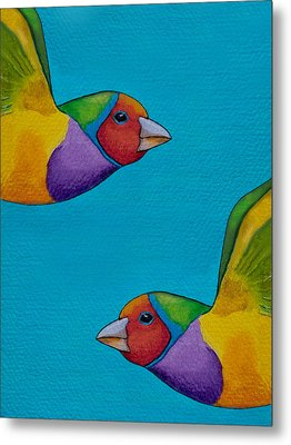 Gouldian Finches Metal Print by Robert Lacy