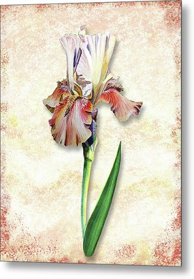 Graceful Watercolor Iris Metal Print