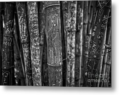 Graffiti Laden Bamboo Black And White Metal Print by Edward Fielding