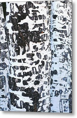 Graffitied Bark No. 1 Metal Print by Sandy Taylor