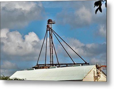 Metal Print featuring the photograph Grain Is Life ...  by Ray Shrewsberry