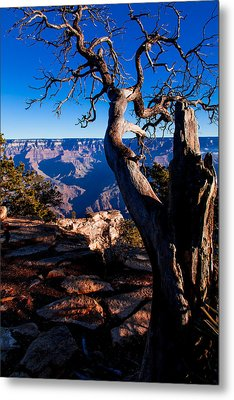 Metal Print featuring the photograph Grand Canyon 27 by Donna Corless